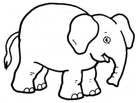 tag elephant coloring pages for preschoolers printable