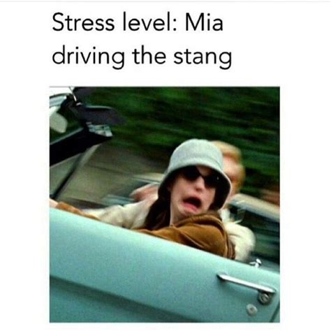 Funny Stress Memes - 2432 best images about totally relatable on pinterest