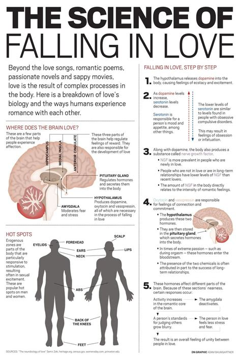 Anatomy of love a natural history of mating marriage and why we stray