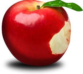 pomme de si鑒e social pom pom pomme par chemins
