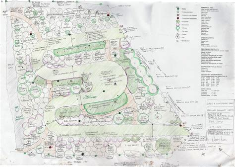 forest nursery layout plan steward community woodland photo gallery