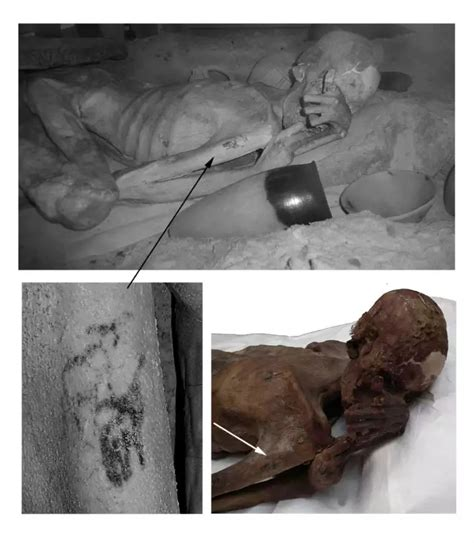 world s oldest world s oldest tattoos discovered on mummies re write history of tattoos