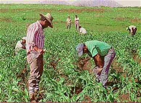 Calendã Agricultores 24 De Junio D 237 A Cesino