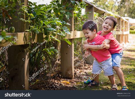 the backyard boys 2 mixed race asian caucasian boys stock photo 238632709