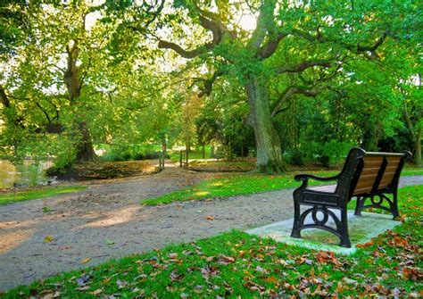 park bench photography pics for gt park bench photography