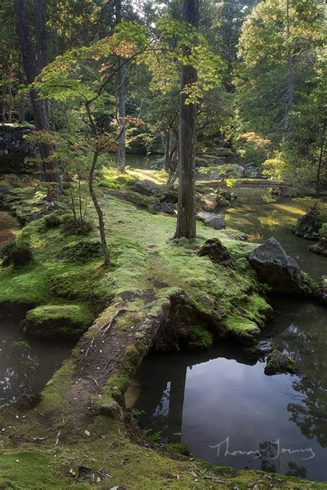 mystic garden wildroad photography