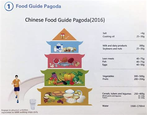 guide cuisine china dietary guidelines