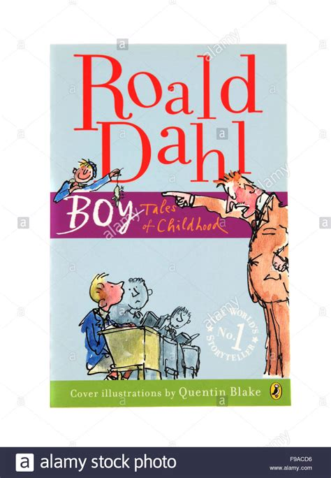 boy tales from the sidelines of an childhood books boy tales of childhood a children s book by roald dahl