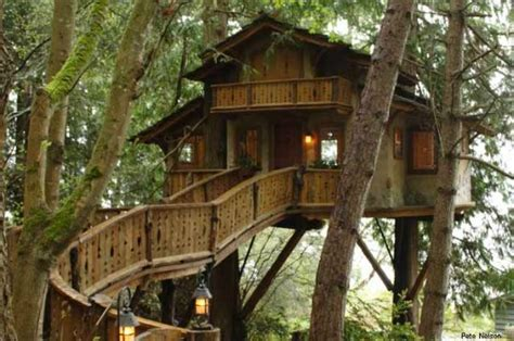 treehouse builder treehouse masters treehouses that are world renowned