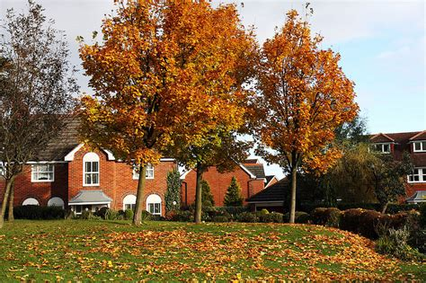 fall house fall archives reinhart reinhart
