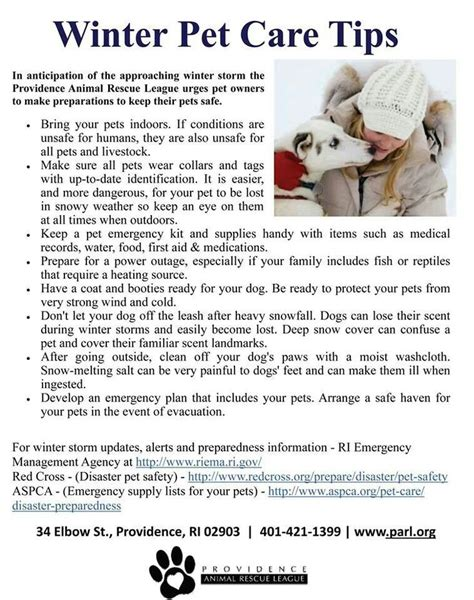 Care Tips 3 by Winter Pet Care Tips