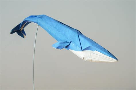 Whale Origami - ho 224 ng tiến quyết fold origami blue whale lazer