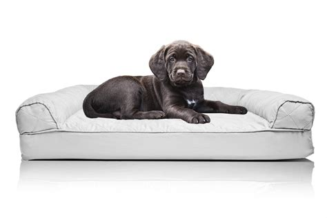 best sofa for dogs top best sofa bed for dogs dog sofa beds review dog beds