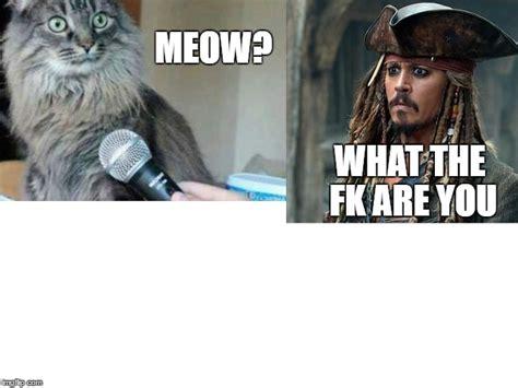 Meow Meme - meow imgflip