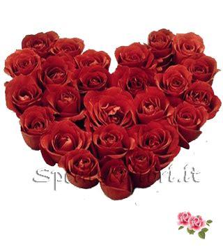 invia fiori invia fiori a domicilo invia fiori invia pianta a domicilio