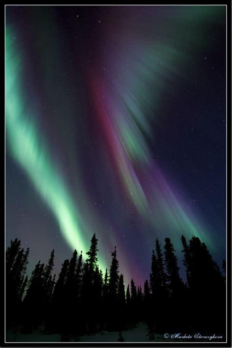fairbanks alaska northern lights 17 best images about northern lights aurora borealis on