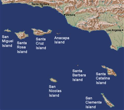 california map island reptiles and hibians found on california islands