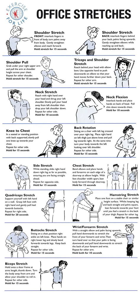 Exercises While Sitting At Desk by Exercises You Can Do While Sitting At Work Health