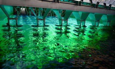 lada uv per depuratore acqua depurazione acque reflue