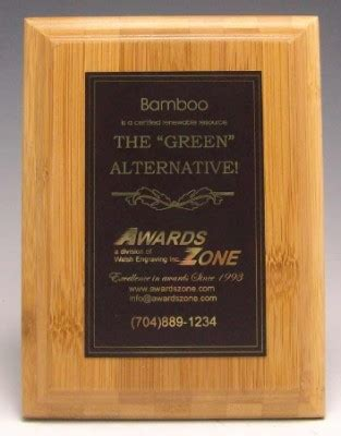the plaque for the alternates is in the room the quot green quot alternative plaque award