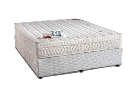 Cost Of Mattress And Box by Buy Mattress Box Top Springwel In India