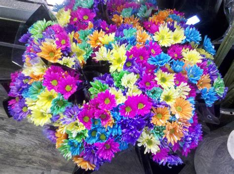 bright colored flowers bedazzles after president s weekend photos