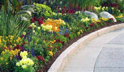 Central Florida Landscaping Outdoor Goods Central Florida Landscaping