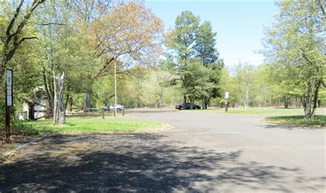 Parvin State Park Cabin Rentals by Parvin State Park Pittsgrove Nj Gps Csites Rates