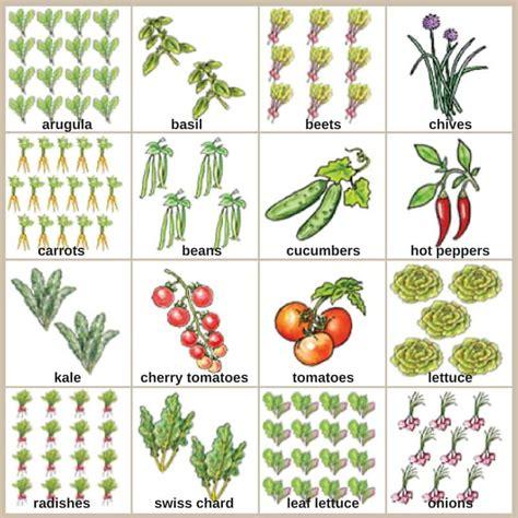 small vegetable garden plans for even the smallest backyard