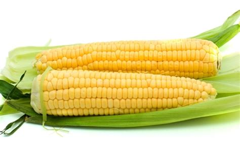why are they called quot ears quot of corn wonderopolis