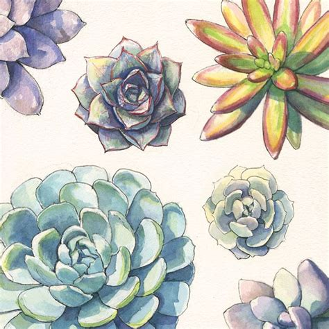 watercolor ink pattern playing around with succulent pattern design watercolor