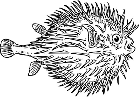 free black and white fish clipart 1 page of public domain