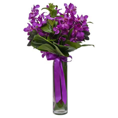 Vanda Orchids In Glass Vases by Glass Vases Buy Flowers Flowers Delivery