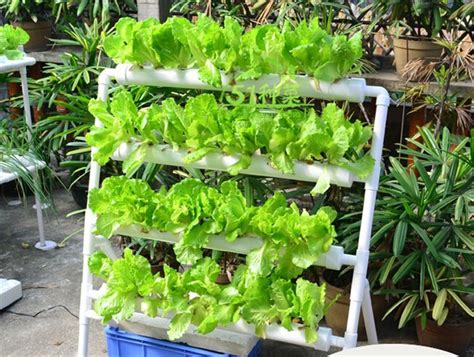 diy nutrients for hydroponics nft hydroponic system nutrient technique the grow