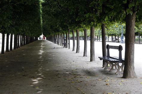 jardin du palais royal palais royal avec le silence par fran 231 ois sureau la croix