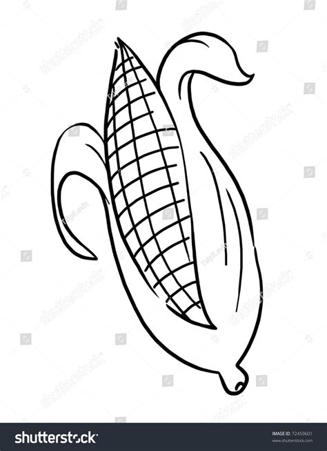 How To Draw An Ear Of Corn corn pencil and in color corn
