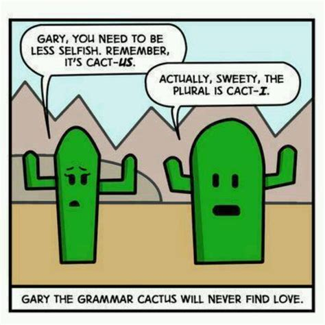 Grammar Shows Us How Its Done by I Would This Hooray For Grammar Jokes