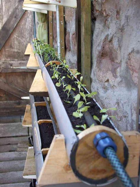 unique gutter garden project  inverness scotland