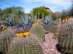 desert botanical garden tripomatic