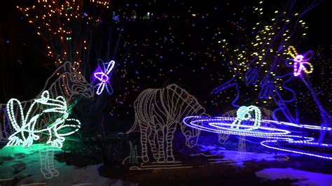 denver zoo lights 2013 youtube