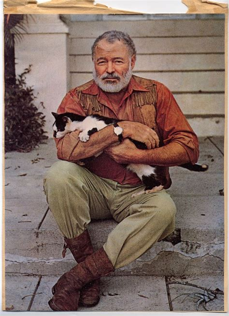 Cat In The By Ernest Hemingway Essay by 577 Best Ernest Hemingway Images On Writers
