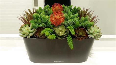 lechuza windowsill self watering planter windowbox com window sill planter snake plant windowsill set of 3 mini