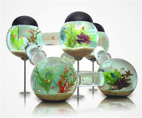 Charming White House Christmas Ornaments For Sale #9: Creative-aquariums-16-1.jpg