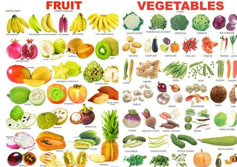 What Do You Call The Vegetable Pictured Below by Elimu Wonderful