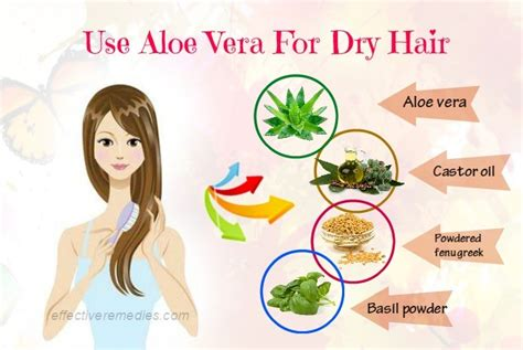 hair conditioner for dry hair over 60 treatment for dry hair over 60 top 22 natural home