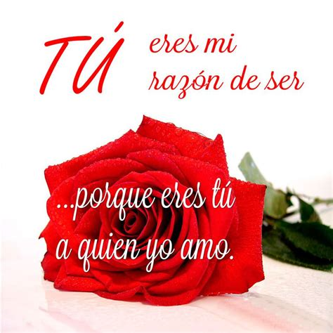 imagenes de amor para enamorar con frases frases para enamorar con rosas imagenes bonitas de amor