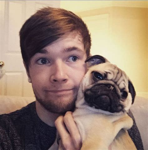 the minecart pugs 11 best images about all about dantdm thediamondminecart on pug in