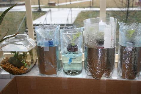 Salad Flower 3 Liter hydroponic lettuce garden from plastic bottles grow bottles