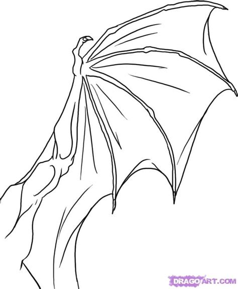dragon wings coloring page how to draw a dragon wing step by step dragons draw a