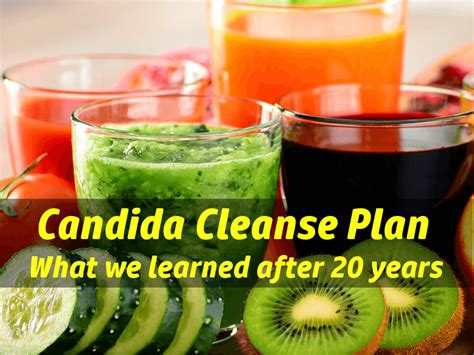 Candida Cleanse Detox Recipe by Candida Cleanse Recipe Besto